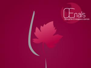 ŒNAIS – Découverte œnologique à domicile
